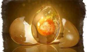 Яйцо для определения порчи: как расшифровать