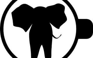 Гадание на кофейной гуще слон: толкование символа